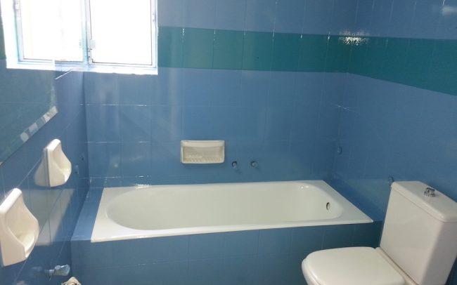 Ανανέωση μπάνιου με διχρωμία